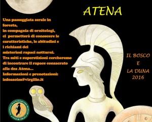 Il Bosco e la Duna – Il Richiamo di ATENA