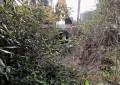 BIO.FOR.POLIS. – sono stati realizzati i 7 sottopassi per la fauna selvatica