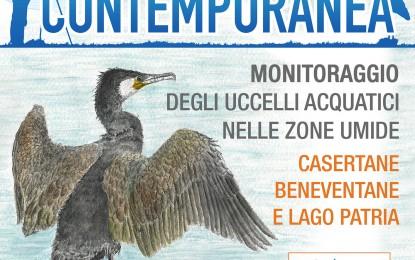 Contemporanea del 13 gennaio 2018 e altre località da monitorare per gli uccelli acquatici svernanti